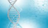 Científicos descubren un nuevo gen responsable del melanoma hereditario