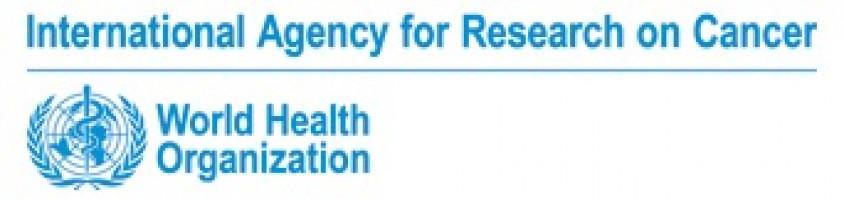 Pesquisa de cáncer colorrectal: Perspectiva de la Agencia Internacional de Investigación del cáncer (OMS)