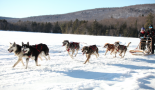 558-pilot-evaluation-of-physical-and-psychological-effects-of-a-physical-trek-programme-including-a-dog-sledding-expedition-in-children-and-teenagers-with-cancer