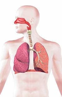 Un nuevo medicamento podría mejorar ligeramente la supervivencia de algunas personas con cáncer de pulmón avanzado