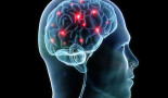 """Cellular """"hotspots"""" in the brain may signify the earliest signs of cancer"""