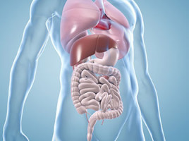New therapeutic target pinpointed for stomach cancer