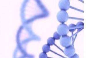 Vinculan cinco nuevos genes con el cáncer de colon