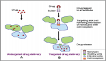 660-role-of-nanotechnology-and-gene-delivery-systems-in-trail-based-therapies