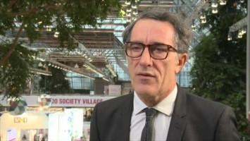 Adjuvant sunitinib for renal cell carcinoma ( Dr Alain Ravaud - Centre Hospitalier Universitaire de Bordeaux, Bordeaux, France )