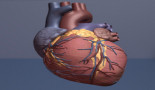 Penn researchers present findings on cardiac risks for cancer patients