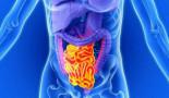 El intestino tiene una reserva de células madre resistentes a quimioterapia