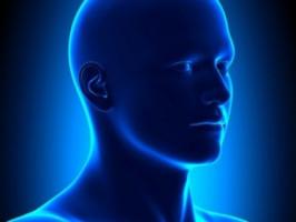 Un panel de expertos desaconseja las pruebas de rutina para el cáncer de tiroides
