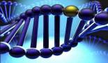 Nuevas mutaciones relacionadas con tumores neuroendocrinos hereditarios