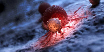 Genetically engineered T cells could lead to therapies for autoimmune diseases