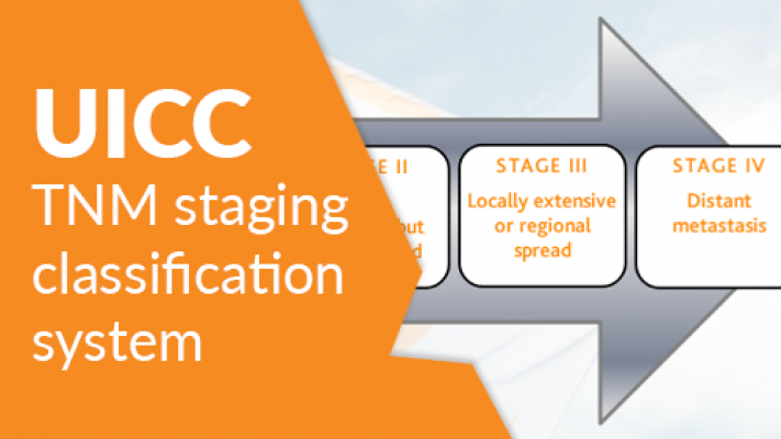 The UICC TNM Classification System