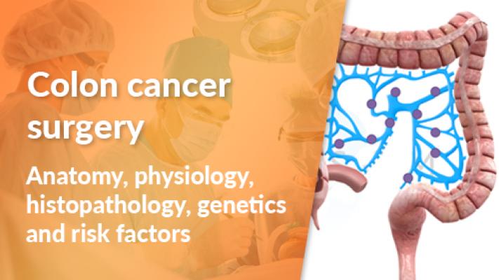 Introduction: Anatomy, Physiology, Histopathology, Genetics and Risk Factors
