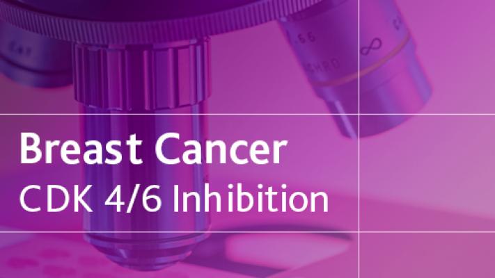 Breast Cancer CDK 4/6 Inhibition