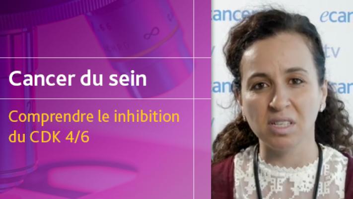 Le cancer du sein - Comprendre le inhibition du CDK 4/6