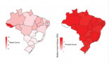 963-the-impact-of-cancer-campaigns-in-brazil-a-google-trends-analysis
