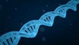 Un investigador obtiene una ayuda de los NIH para estudiar los mecanismos a escala atómica y las mutaciones causantes de enfermedades
