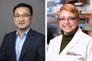 Researchers ID target for colorectal cancer immunotherapy
