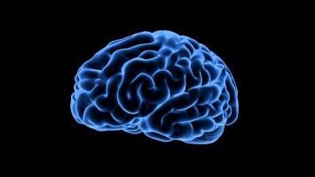 Researchers discover new way to starve brain tumours