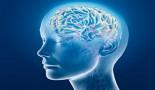 1136-multidisciplinary-brain-metastasis-clinic-is-it-effective-and-worthwhile