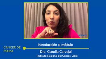 Módulo: Cáncer de Mama ( Dra. Claudia Carvajal, Dr. Federico Bakal, Dra. Militza Petric, Dr. Gonzalo Ziegler y Dr. Francisco Acevedo )