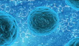 Bacterial molecule may be key to fighting stomach cancer