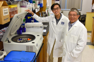 New approach emerges to better classify, treat brain tumours