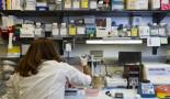 Un pequeño número de células en un tumor podría ser un factor clave en la metástasis del cáncer