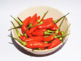 Capsaicin analog could help treatment-resistant lung cancer