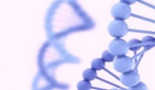 1249-clinical-significance-of-microrna-200-and-let-7-families-expression-assessment-in-patients-with-ovarian-cancer