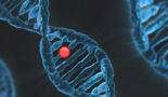 Researchers prove for the first time that silent mutations can predict the development of cancer cells