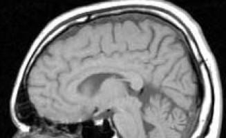 New drug targets for lethal brain cancer discovered