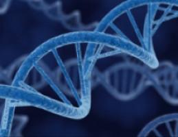 'Genetic rewiring' drives cancer's drug resistance