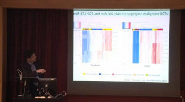 Global microRNA profiles in extracranial and intracranial malignant germ cell tumours ( Dr Matthew Murray - Cambridge Cancer Centre, UK )