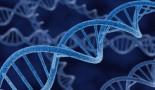 Descubren 21 pistas sobre el origen del cáncer