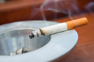 Changes to gut microbiome may slow cancer growth in smokers