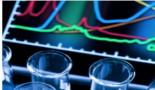 Una proteína de supervivencia, un nuevo potencial objetivo para muchos tipos de cáncer